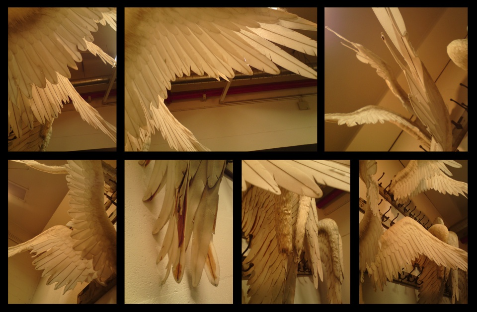 les-anges-au-portemanteau