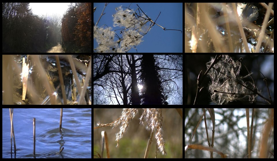 printempsbruxellois