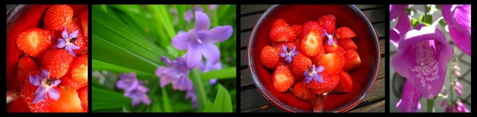 de-fraises