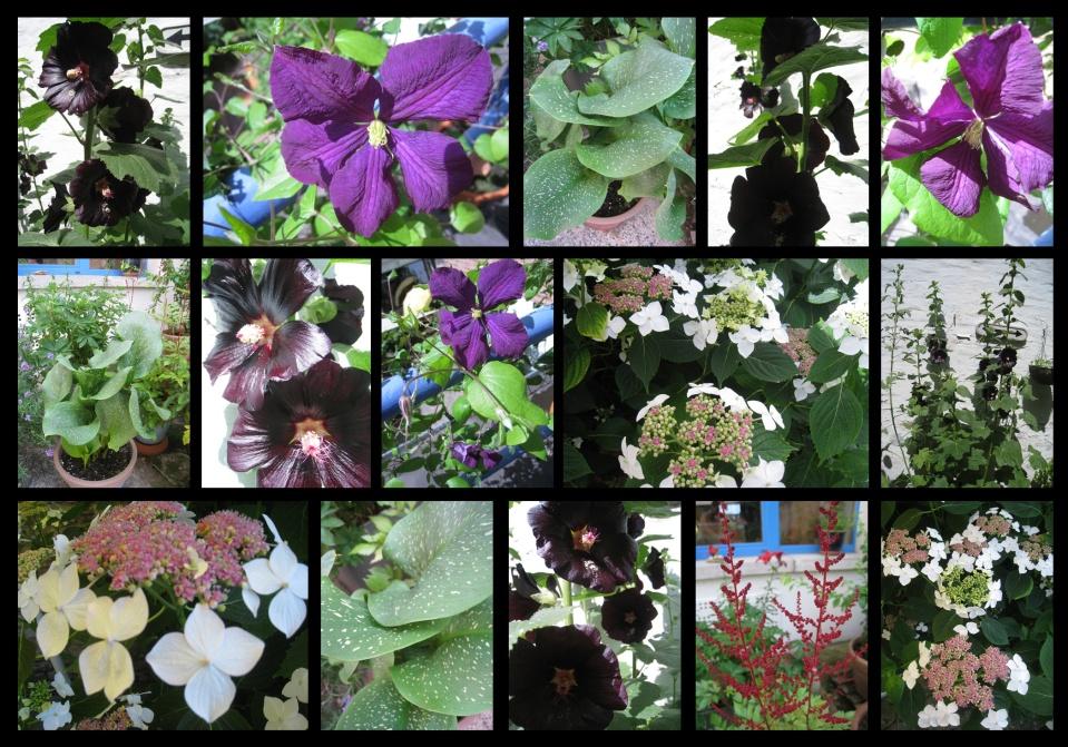 jardin93