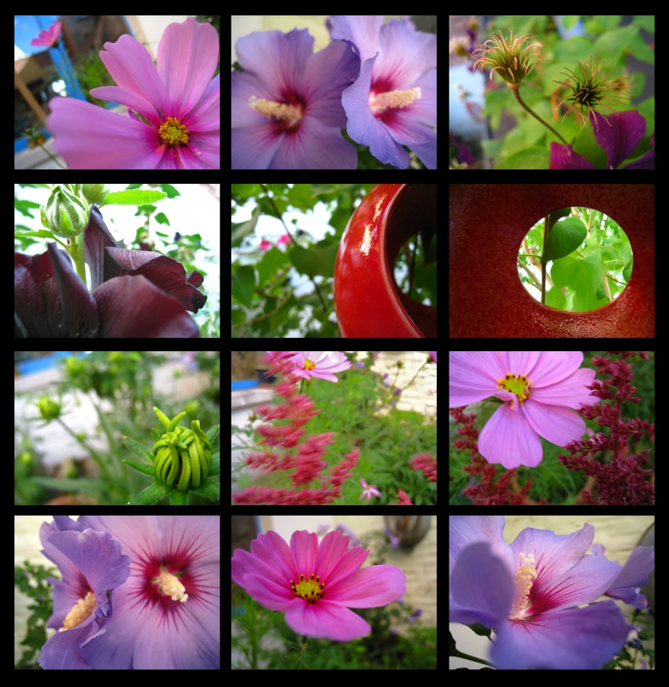 jardin102