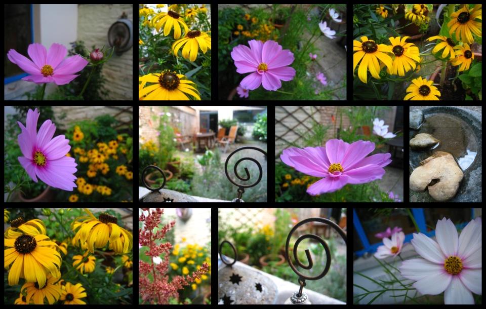 jardin106