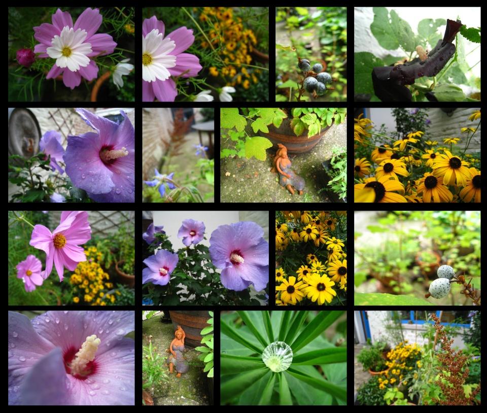 jardind'automne7