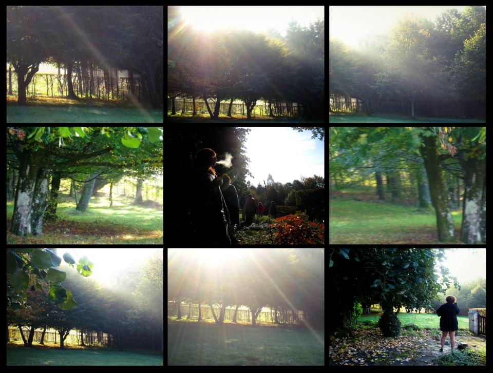 herbeumont-automne