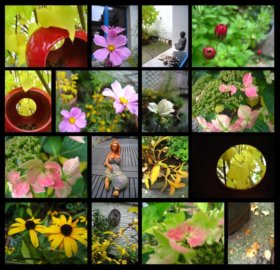 jardind'automne12
