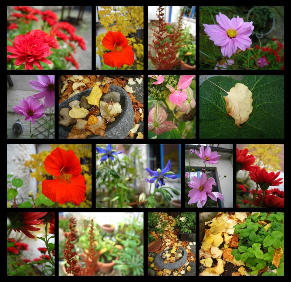 jardind'automne
