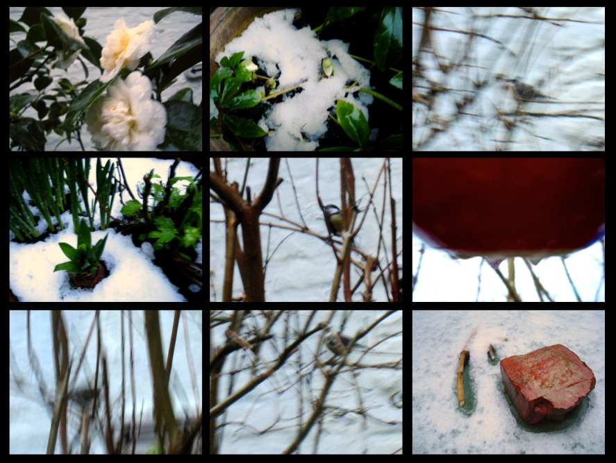jardin-d'hivers2