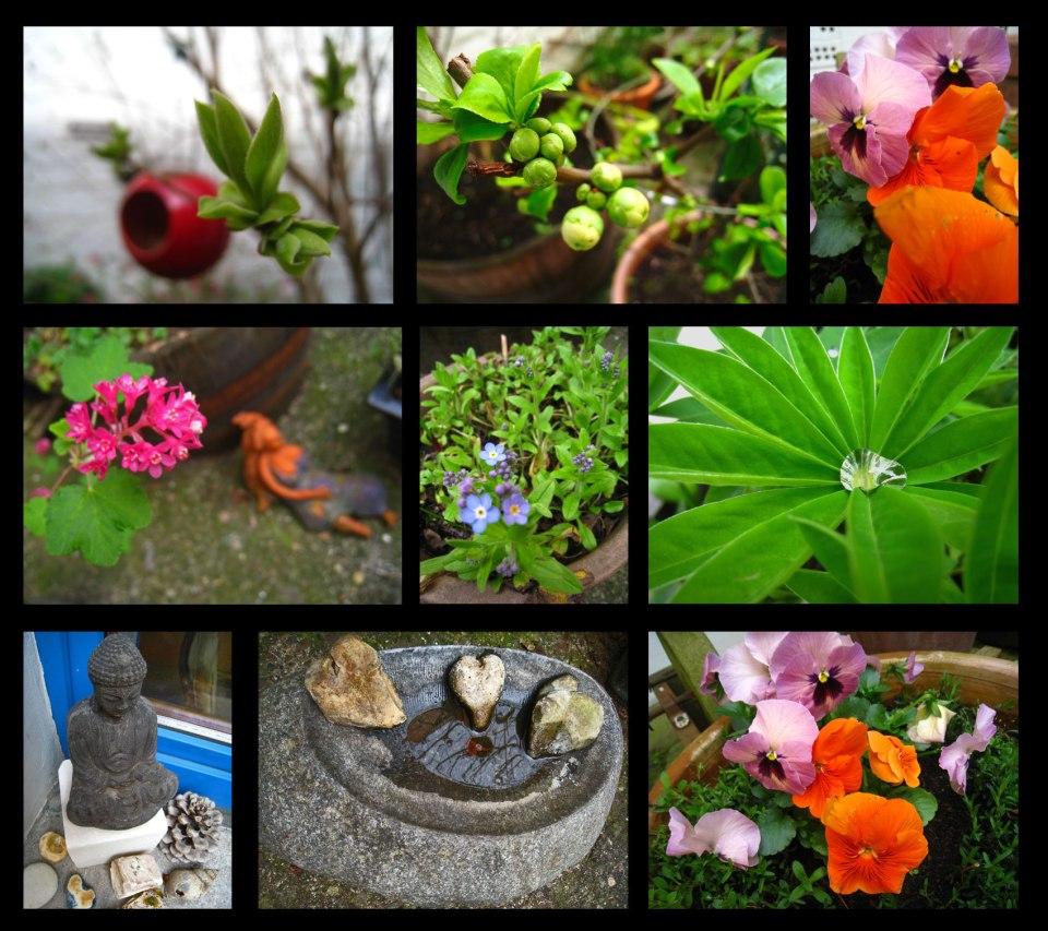 jardin-de-printemps2