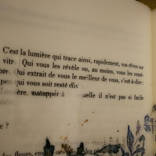 irene tetaz, Philippe Jaccottet